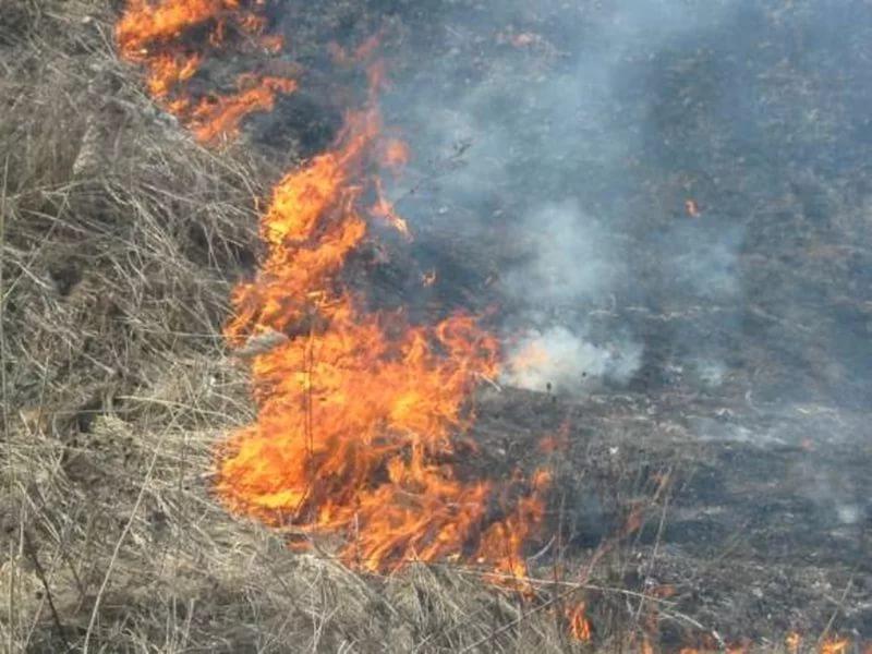 Поджигателя травы вБелгороде оштрафовали на300 тыс руб.